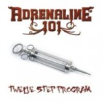 Adrenaline 101 – Twelve Step Program