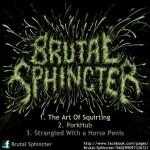 Brutal Sphincter – Demo
