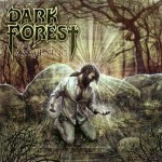 Dark Forest – The Awakening
