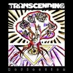Transcending – Reflection