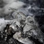 Aphonic Threnody – When Death Comes