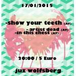 Show Your Teeth, Artist Dead, In This Chest 17.01.15 JUZ, Wolfsberg