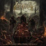 Infectology – Innards Of Misanthropic Embodiment