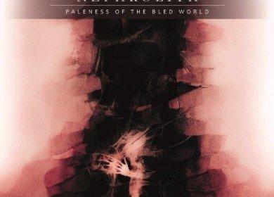 nephrolith - paleness of the bled world album artwork