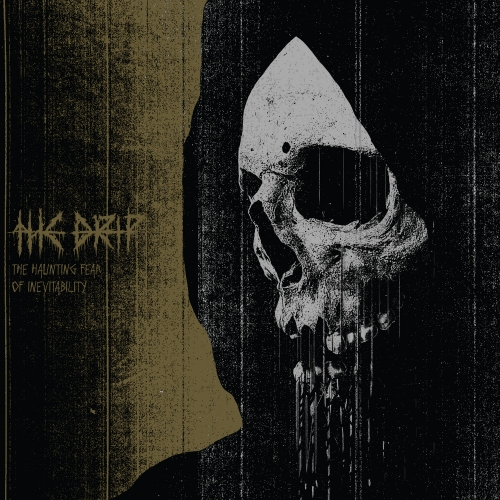 the drip - the haunting fear of nventability album artwork