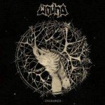 Wound – Engrainded