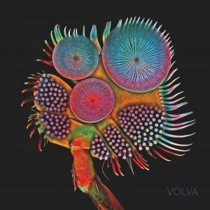 Echolot-Volva-album-artwork