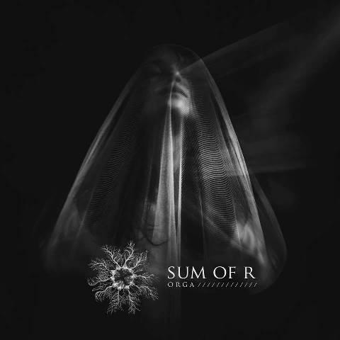 Sum -of-R-Orga-album-artwork