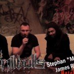 Emil Bulls Interview