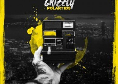 grizzly-polaroids-album-artwork