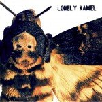 Lonely Kamel – Death's-Head Hawkmoth