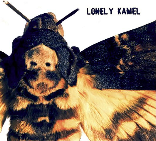 lonely-kamel-deaths-head-hawkmoth-album-artwork