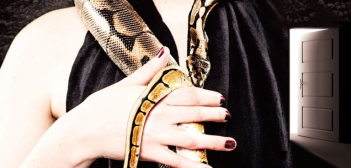 snakes-in-paradise-step-into-the-light-album-cover