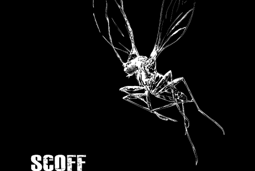 SCOFF-Ikarus-album-cover