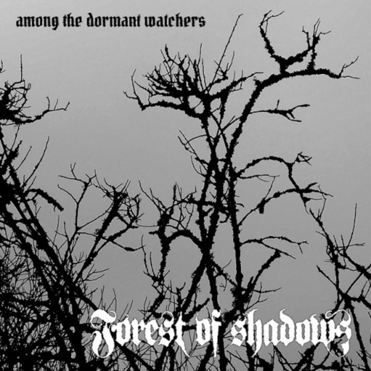 Forest-of-Shadows-Among-the-Dormant-Watchers-album-cover
