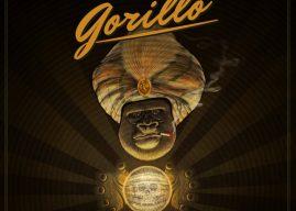 """Go! Go! Gorillo – Neues Video zum Song """"Like Lucifer"""" vom Album """"Taking Care Of Monkey"""" veröffentlicht"""