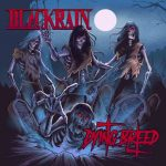 "BLACKRAIN – neues Live-Video""Blast Me Up"""