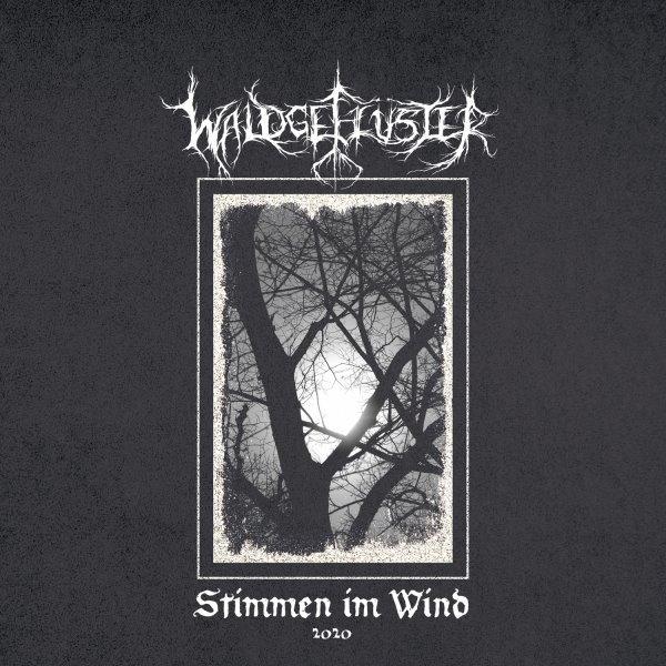 Waldgefluster - Stimmen im Wind 2020 album cover