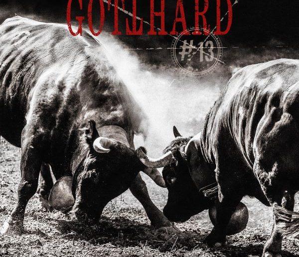 Gotthard - 13 album cover