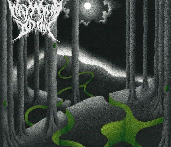 Wayward Dawn - Haven of Lies album cover