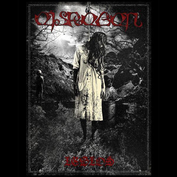 Eisregen - Leblos album cover