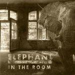 BLACKBALLED – Elephant In The Room