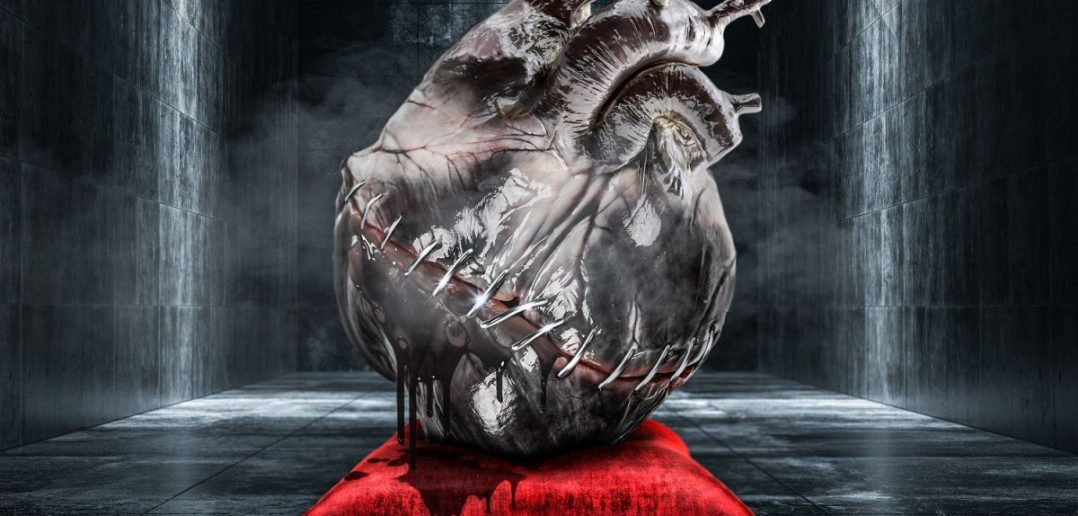 veonity - sorrows - album cover