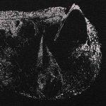Demon Head – veröffentlichen Albumdetails