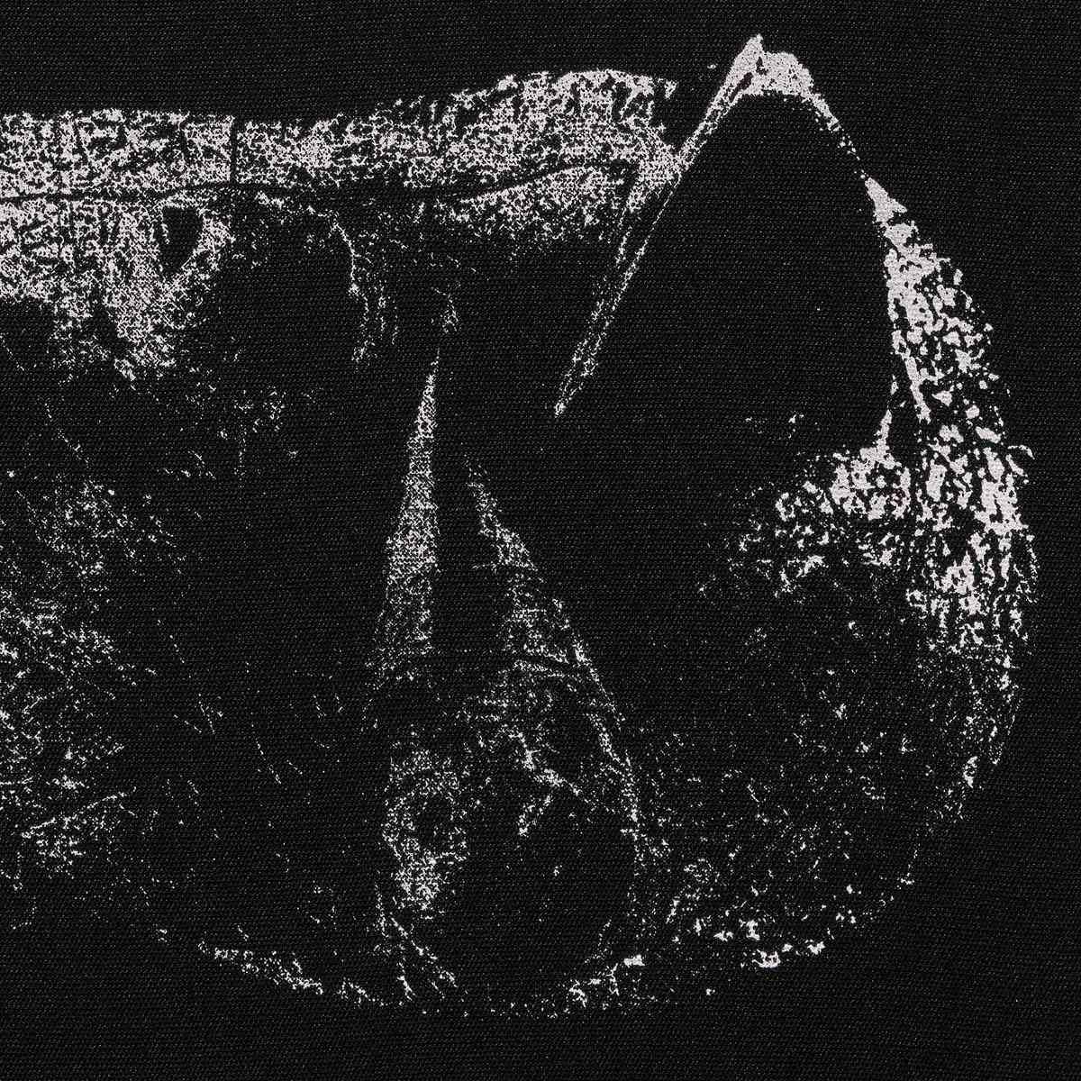 demon head - viscera - album cover