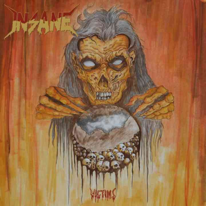 insane - victims - album cover