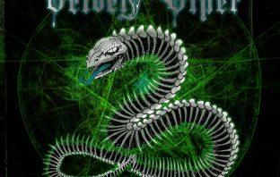 velvet viper - cosmic healer - album cover