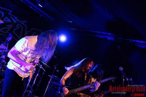 Antipeewee-Live